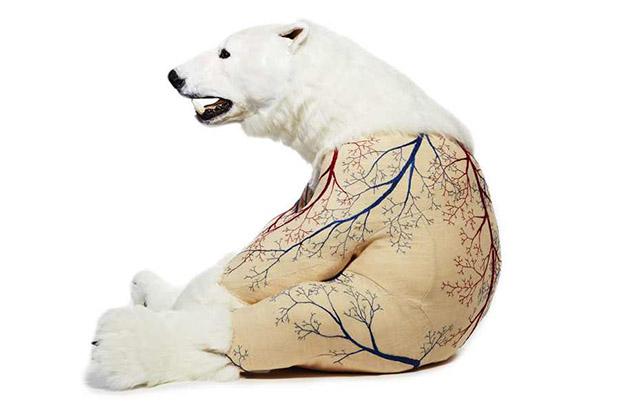 deborah simon polar 2