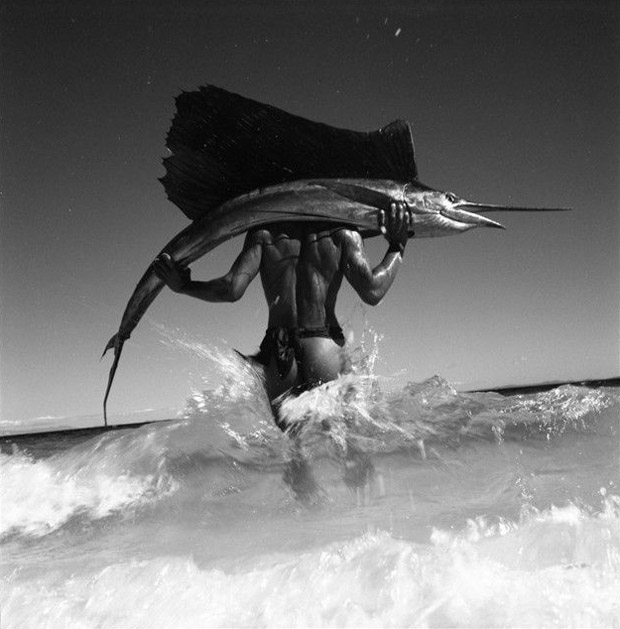 gian paolo barbieri Sail Fish